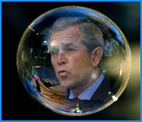 Bush in a bubble
