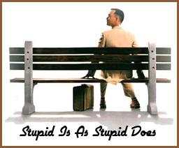 StupidIsAsStupidDoes.jpg