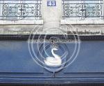 ParisSWAN.jpg